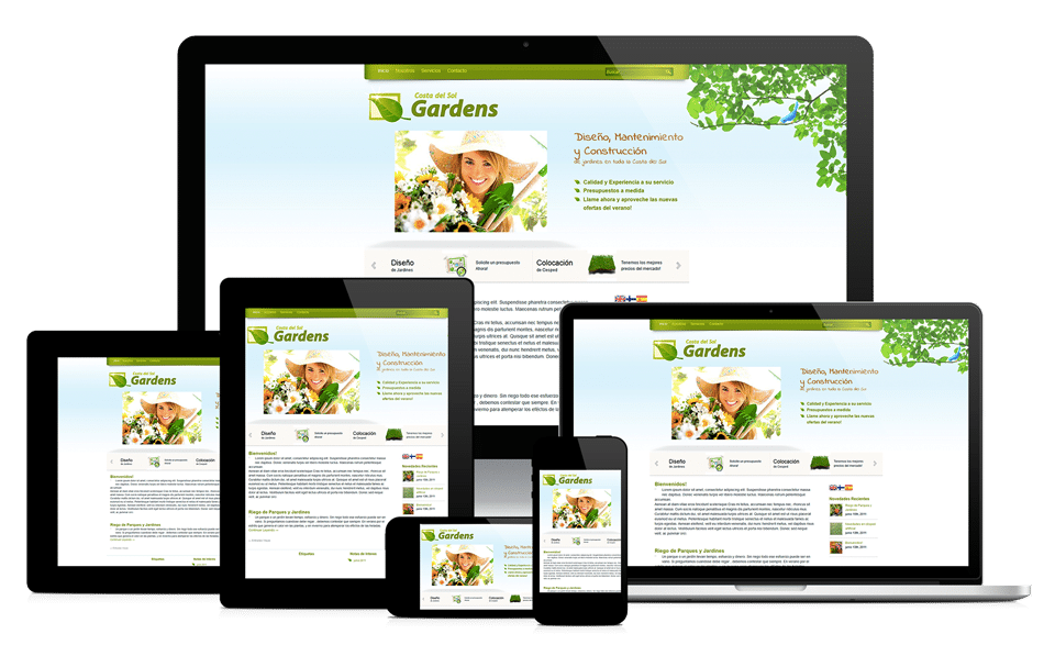 professional web design in arizona